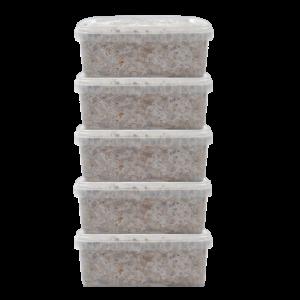 Buy 5 Magic Mushroom grow kit Discount Pack Online