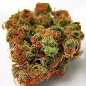 Buy Purple Urkle Weed Online